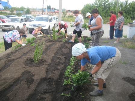Посадка цветов в поселке Смолино г. Челябинска